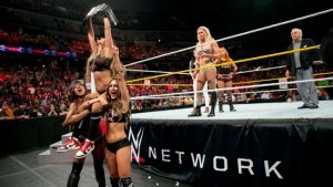 Nikki Bella Diva's Champion