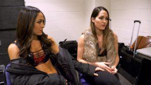 Nikki and Brie Bella