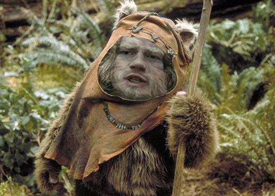 ABP Bear Ewok