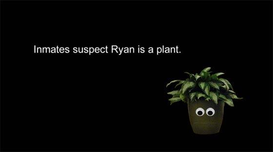 RyanPlant