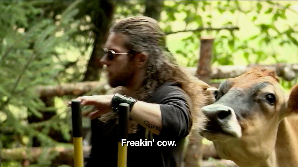 Freakin' Cow